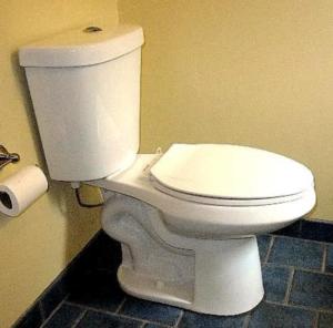 Early Model dual flush toilet.